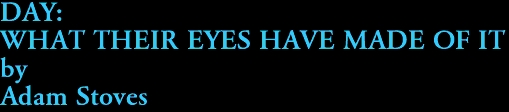 DAY: WHAT THEIR EYES HAVE MADE OF IT by Adam Stoves