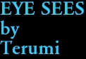 EYE SEES by Terumi