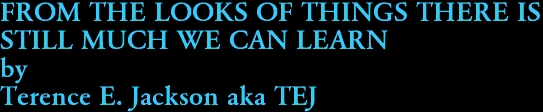 FROM THE LOOKS OF THINGS THERE IS  STILL MUCH WE CAN LEARN by Terence E. Jackson aka TEJ