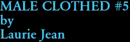 MALE CLOTHED #5 by Laurie Jean
