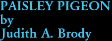 PAISLEY PIGEON by Judith A. Brody