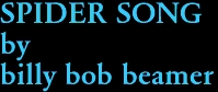 SPIDER SONG by billy bob beamer