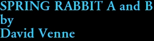 SPRING RABBIT A and B by David Venne