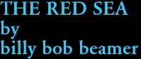 THE RED SEA by billy bob beamer