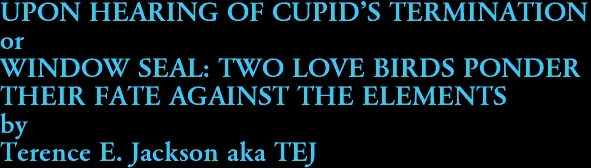 UPON HEARING OF CUPID'S TERMINATION or WINDOW SEAL: TWO LOVE BIRDS PONDER  THEIR FATE AGAINST THE ELEMENTS by Terence E. Jackson aka TEJ