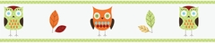 Owl Turquoise and Lime Wallpaper Border by Sweet Jojo Designs