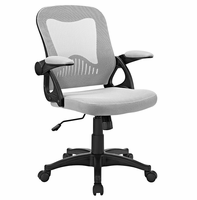 Advance Office Chair, Gray [FREE SHIPPING]