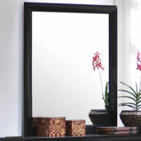 Coaster Furniture 200704 - Briana Mirror (Black)
