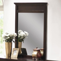 Coaster Furniture 201294 - Kendra Mirror (Mahogany)