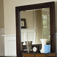 Coaster Furniture 201384 - Harbor Mirror (Cappuccino)