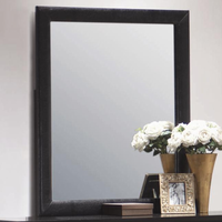 Coaster Furniture 201404 - Dylan Mirror (Black)