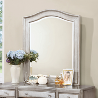 Coaster Furniture - 204188 - VANITY'S MIRROR (METALLIC PLATINUM)