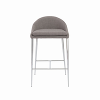 Euro Style Brielle Counter Stool in Gray With Chrome Legs, Set of 2
