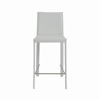 Euro Style Hasina Counter Stool in White With Stainless Steel Legs, Set of 2