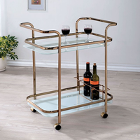 Furniture of America FOA-CM-AC235 Tiana Contemporary Serving Cart