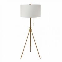 Furniture of America FOA-L731171F-GL Zaya Contemporary Floor Lamp