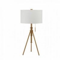 Furniture of America FOA-L731171T-GL Zaya Contemporary Table Lamp