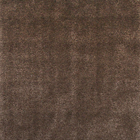 Furniture of America FOA-RG3106 Ankara Transitional 5' X 8' Area Rug, Brown