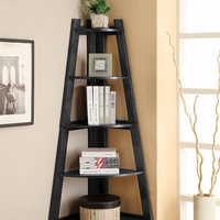 Furniture of America FOA-CM-AC6214BK Lyss Contemporary Ladder Shelf, Black
