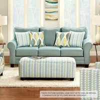 Furniture of America FOA-SM8140-LV Brubeck Transitional Love Seat, Soft Teal