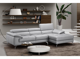 J & M Furniture Liam Premium Leather Sectional in Left Hand Facing Chaise