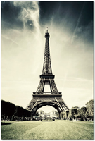 J & M Furniture Wall Art Eiffel Tower