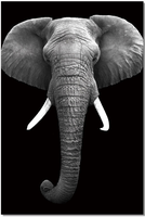 J & M Furniture Wall Art Elephant
