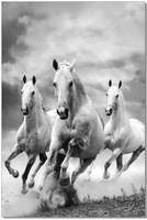 J & M Furniture Wall Art Galloping Horses