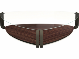 Modloft Crayford Coffee Table in Clear on Rosewood