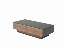 Modrest Darius Modern Walnut Coffee Table