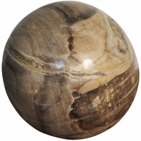 Noir Furniture Fossil Ball, Large