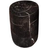 Noir Furniture Full Polished Fossil Stool