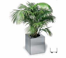 Planter Accessories by Blomus