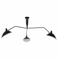 View Ceiling Fixture, Black [FREE SHIPPING]