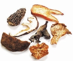 Dried Wild Forest Mixed Mushrooms, France