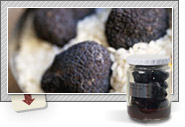 Truffles and Truffle Specialties from Italy  and Asia