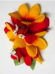 Plumeria hair clip #30 Red /yellow