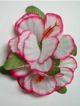 Double Hibiscus hair clip - #7 white/ pink