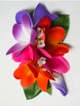 Plumeria hair clip #18 Purple /orange