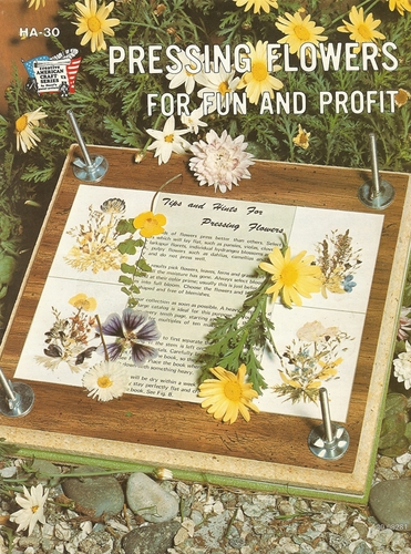 Pressing Flowers For Fun And Profit 1975