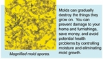 Decreasing Mold Exposure<br>