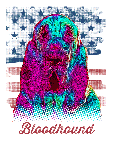 Bloodhound T Shirt American Flag