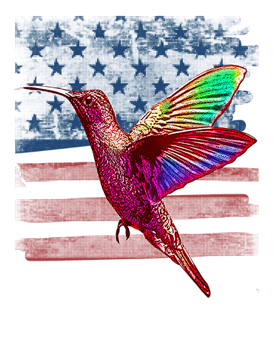Hummingbird T Shirt American Flag