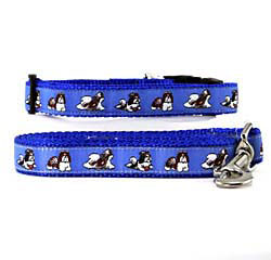 Shih Tzu Collar & Leash
