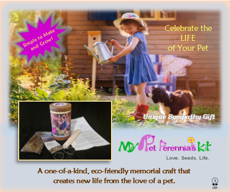 Pet Memorial Perennials