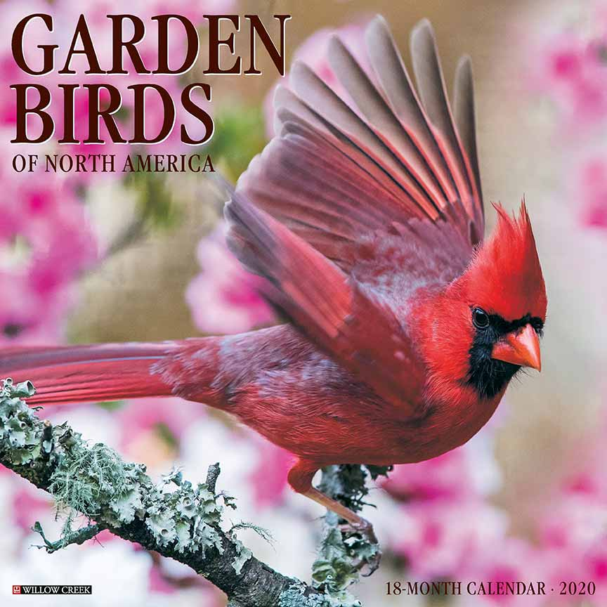 2020 Garden Birds Calendar Willow Creek