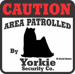 Yorkshire Terrier Bumper Sticker Caution