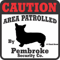 Corgi Bumper Sticker Caution