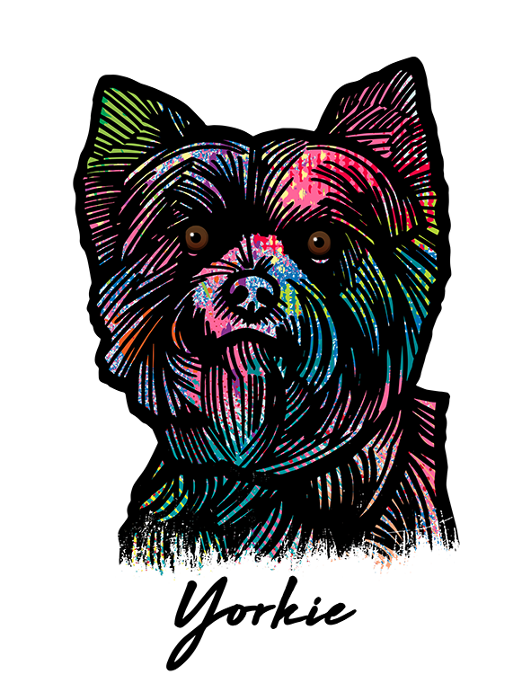 Yorkshire Terrier T Shirt Colorful Abstract