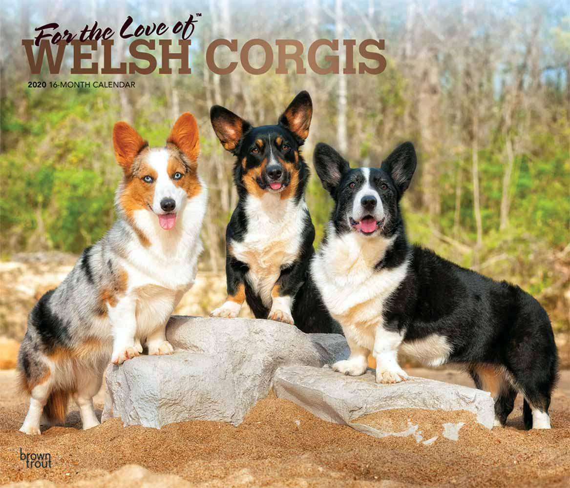 2020 For the Love of Corgis Deluxe Calendar